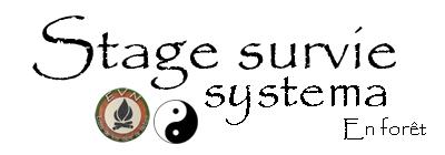 stage survie - systema